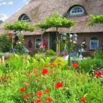 B&B Het Farm-house Natuurpark